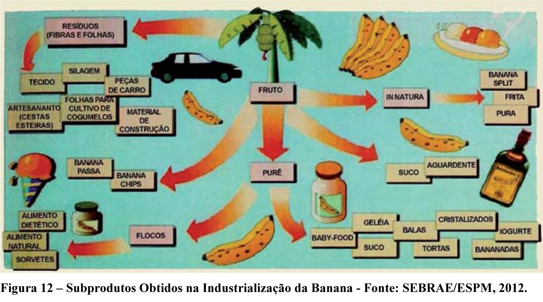Fluxo da Bananeira